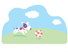 <b>Dog Chasing a Ball</b>