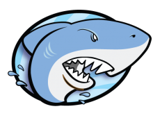 <b>Shark Logo</b> – Concept Sketch
